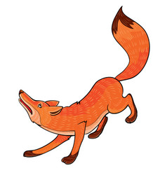 Red sly fox cartoon isolated object on a white vector