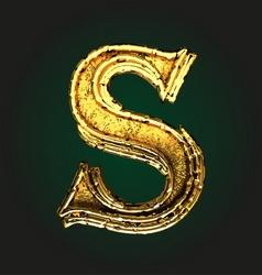 s golden letter vector image