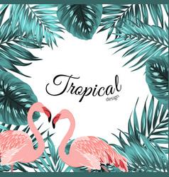 tropical border frame jungle leaves flamingo birds vector image vector image