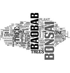 Baobab bonsai text word cloud concept vector