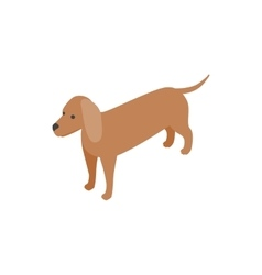 Dachshund dog icon isometric 3d style vector