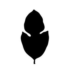 Kluwih or kalawi leaf silhouette vector