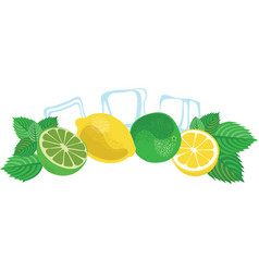 Mojito lime lemon mint leaves and ice cubes vector