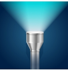 Pocket Torch Light Flashlight vector image