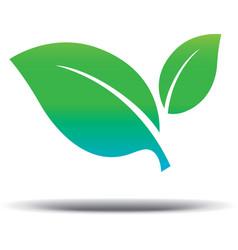 Vegan Logo fresh green leaf on a white background vector image vector image