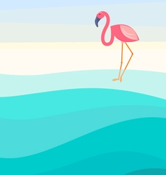 Flamingo background vector