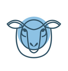 drawing head of sheep vector image