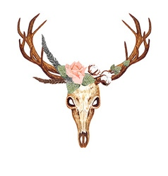Deer Skull Rose vector image