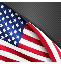 patriotic background with american vector image