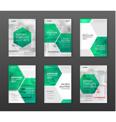 pharmaceutical brochure cover templates set vector image