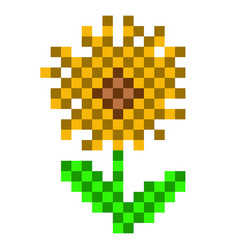 pixelated sunflower icon vector image