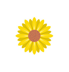 Sunflower flower icon design template isolated vector