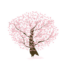 abstract floral sakura flower japanese tree vector image