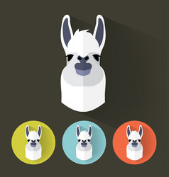 Llama portrait with flat design vector