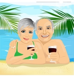 senior couple drinking red wine lying on the beach vector image