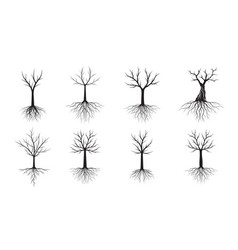 set black trees with roots outline vector image