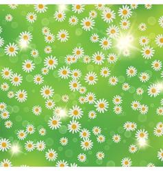 Summer daisies background vector