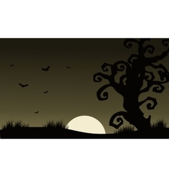 At Afternoon Halloween scenery bat and dry tree vector image