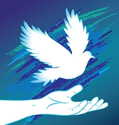People hand and bird pigeon vector image vector image