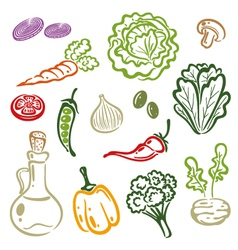 Salad vegetable vector image vector image