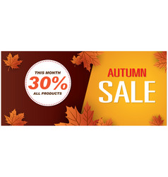 Autumn sale this month 30 all products ima vector