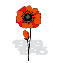 isolated poppy flower poster vector image