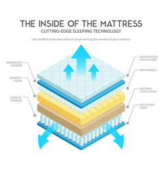 Mattress anatomy vector