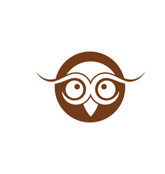 owl bird logo template vector image