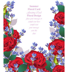 summer watercolor roses flowers and lavender vector image
