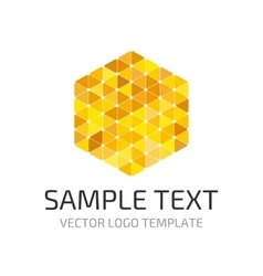 Template triangle logo vector image vector image