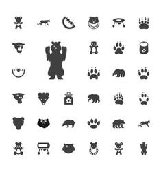 33 bear icons vector