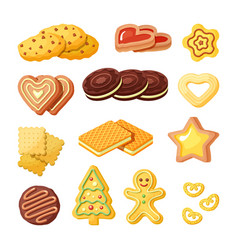 Delicious biscuits bakery products flat vector