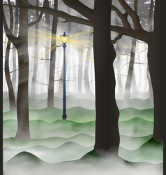 mysterious urban park with a lot tree trunks vector image