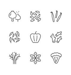 set line icons of seasoning vector image