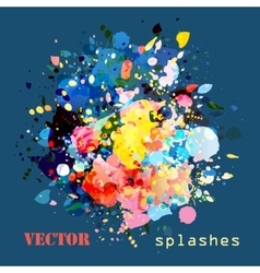 splashes colorful paints vector image