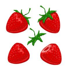 strawberry berries set vector image