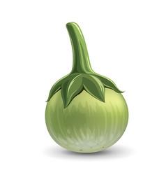 Thai eggplant green fresh realistic design vector
