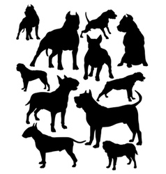 fighting dogs vector image