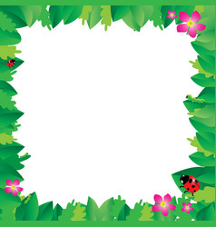 ladybug on leaves with green leaves frame vector image