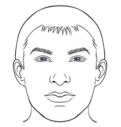 men face chart vector image