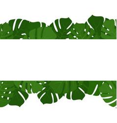 Tropical monstera leaves frame vector