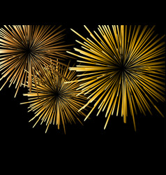 fireworks on a black background vector image