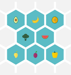 flat icons muskmelon mango apricot and other vector image