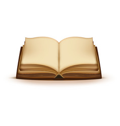 old open magic book with blank pages vector image vector image