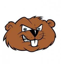 Beaver vector