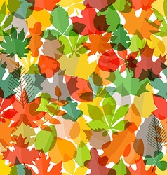 Different color autumn leaves seamless pattern vector