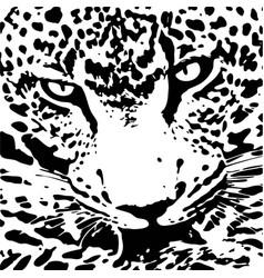 jaguar walking from dark logo design vector image