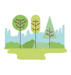 park city landscape trees bushes vector image