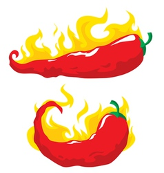 chili pepper in fire vector image vector image