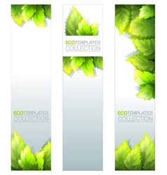 Eco Banners Template vector image